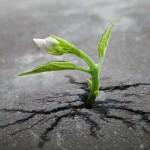 attesa una dimensione tra ansia e speranza