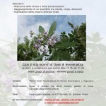CICLO DI 8 INCONTRI DI CLASSI DI BIOENERGETICA